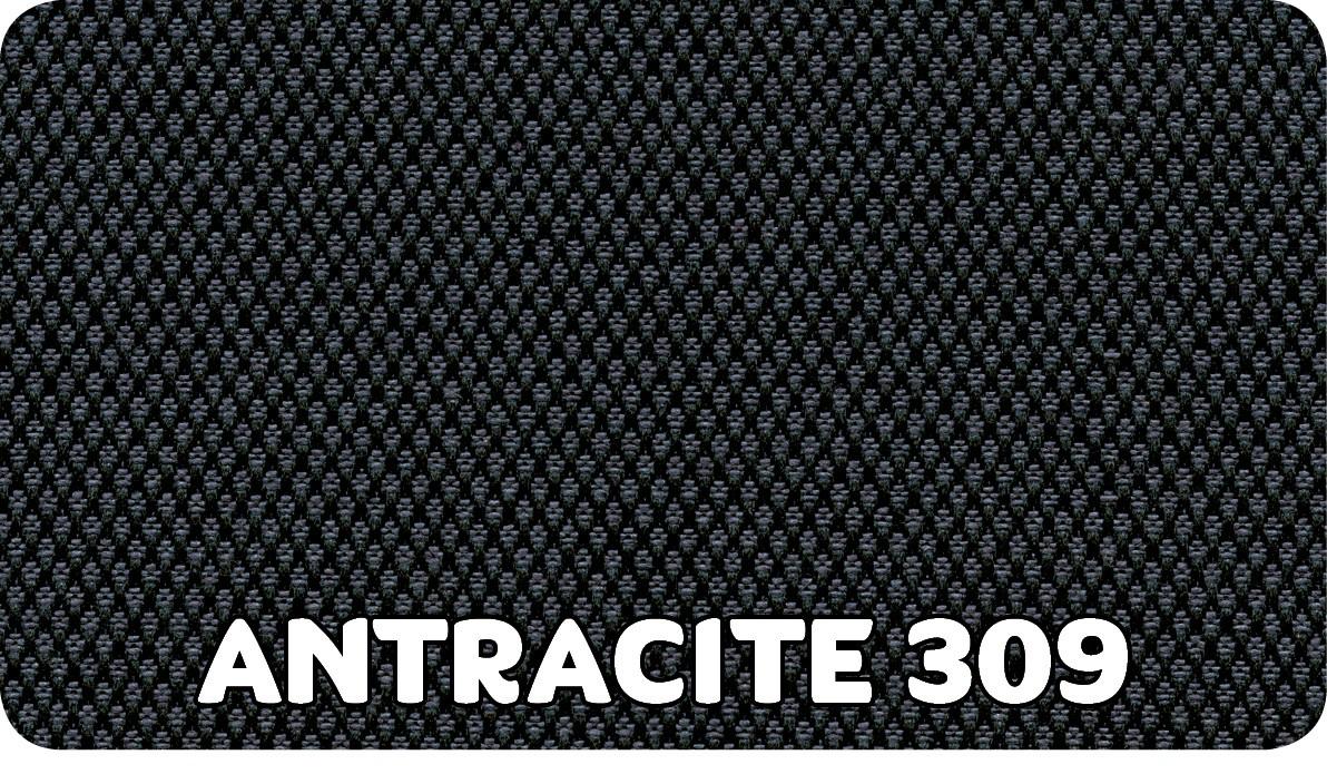 Antracite 309